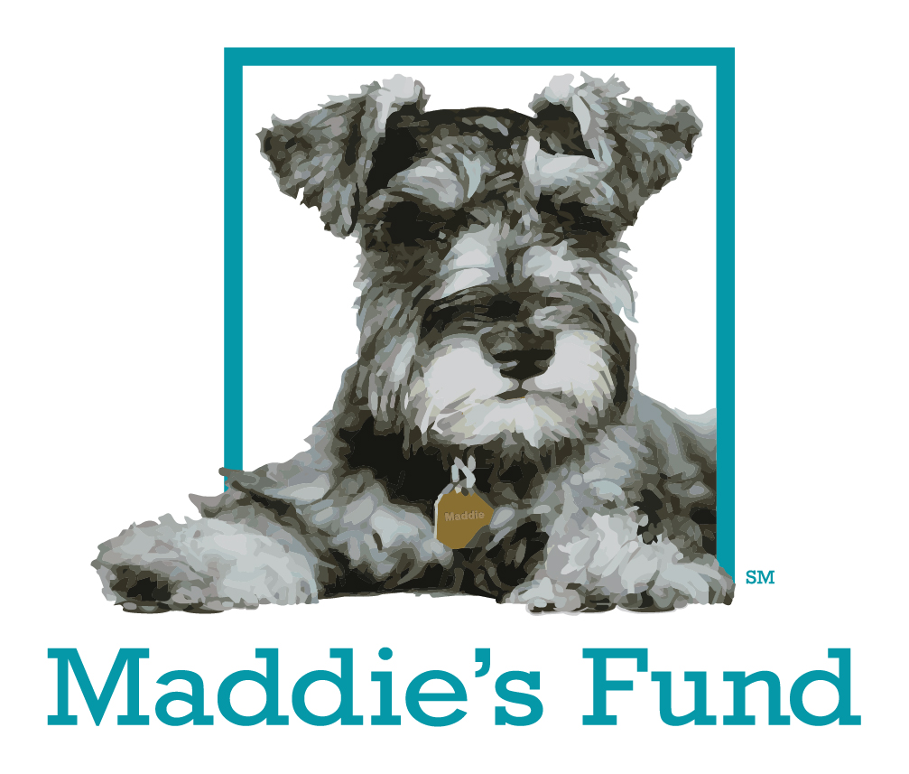 maddies fund square color